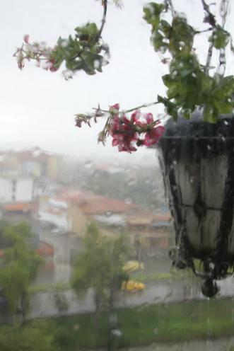 rain rolling down the window in Cuenca