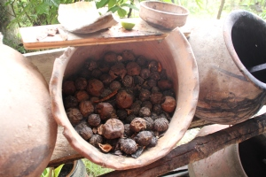 walnut shell natural dyes